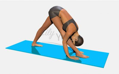 Parsvottanasana Hands On Mat
